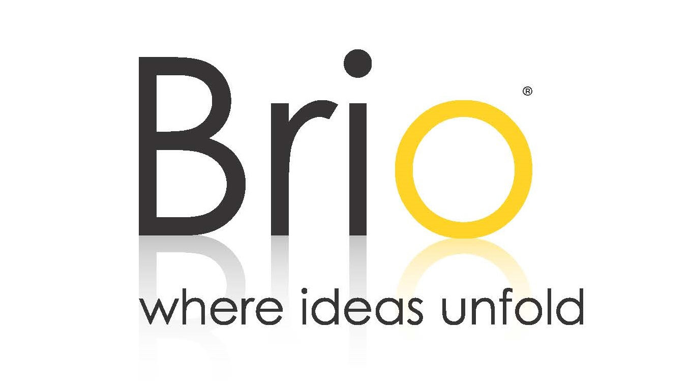 Brio Logo with tag line and refelction pms
